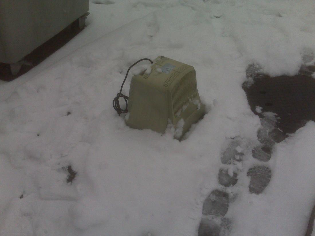 monitor en la nieve