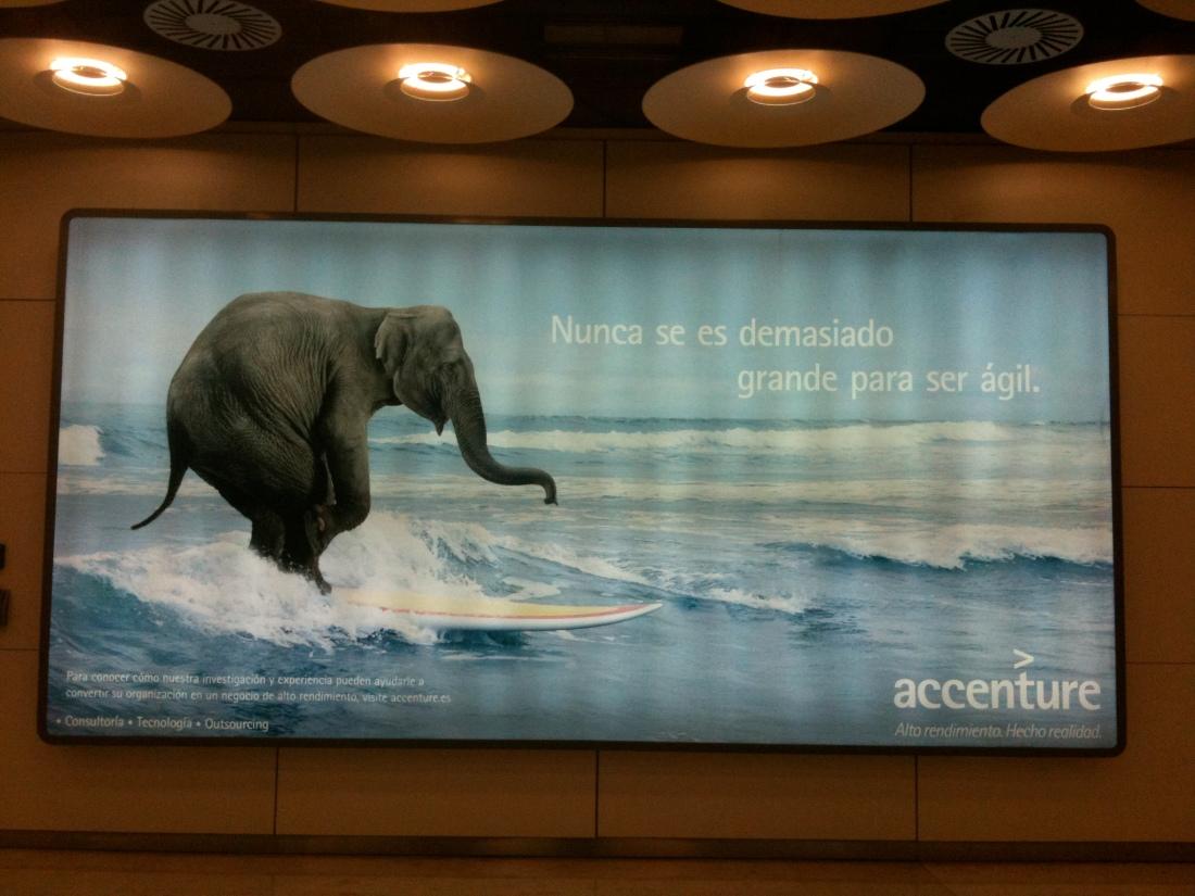 El elefante de Accenture
